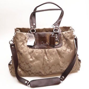 COACH ASHLEY SIGNATURE SATEEN CRYAL F15510